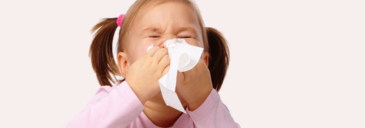 Chiropractic Waukesha WI Cold and Flu Season