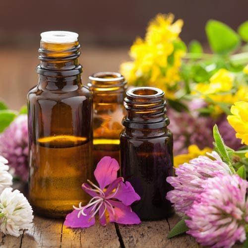 Chiropractic Waukesha WI Herbal Medicine